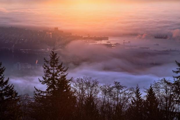 Fogcouver Dawn
