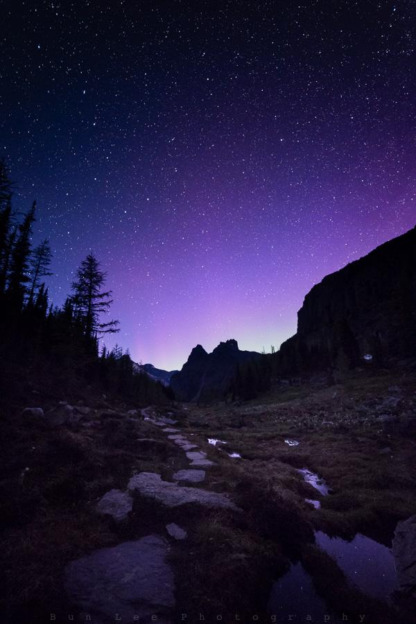 Path To The Purple Light