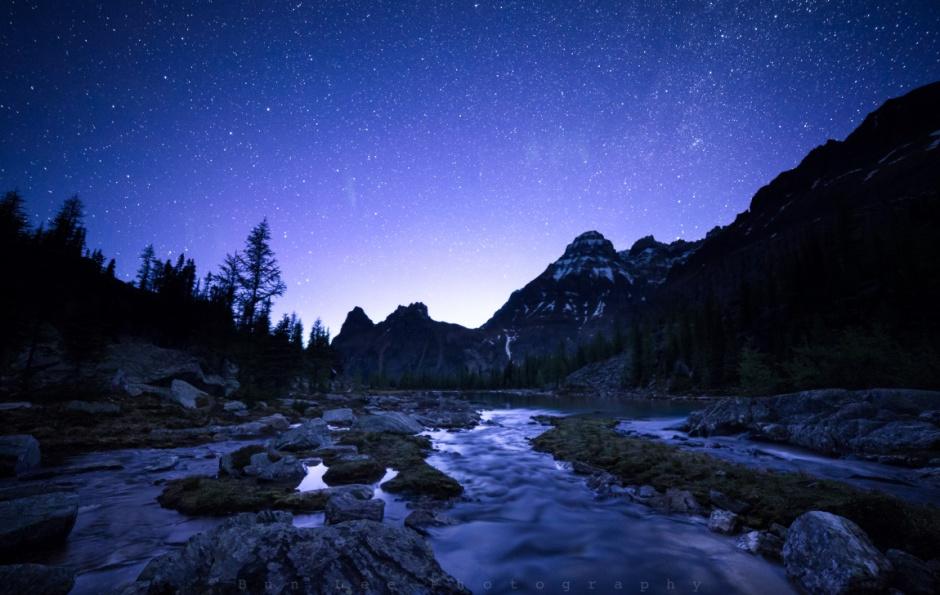 Night Stream