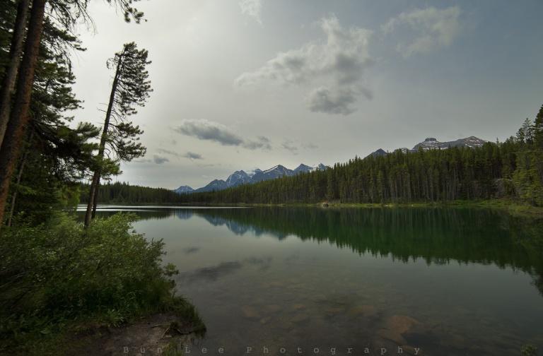 Herbert Lake