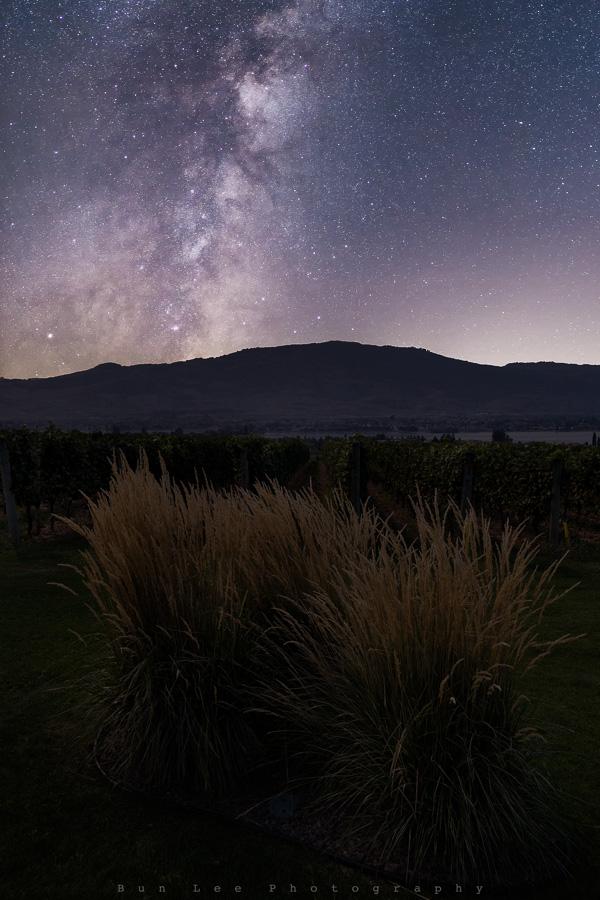 Winery Galaxy
