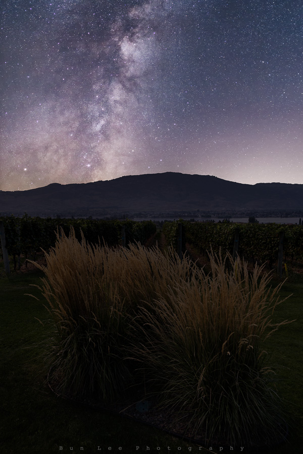 Winery Galaxy
